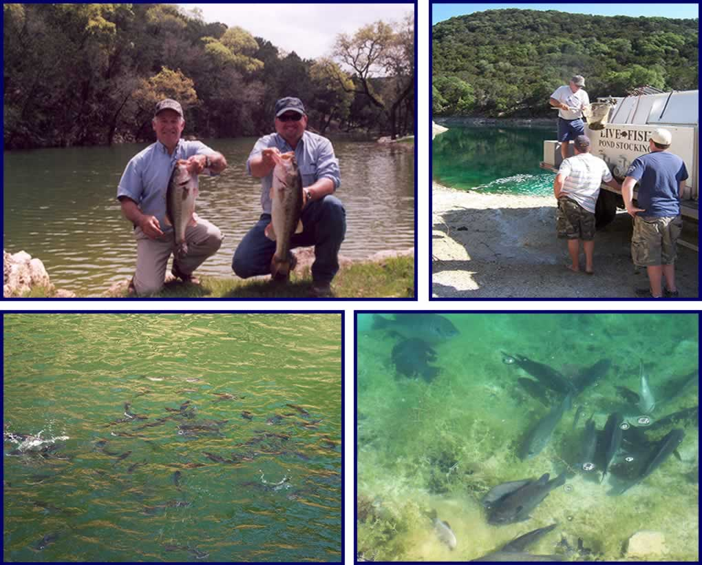 texas lake management delivery and fish stocking